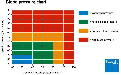উচ্চ রক্তচাপ বা High blood pressure/প্রাপ্ত বয়স্ক মানুষের রক্তচাপ/ যে সব খাবারে বাজে কোলেস্টেরল নেই /  যে সব খাবারে বাজে কোলেস্টেরল আছে / ভাল থাকতেহলে